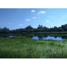 участок, Панковка пгт., площадь: 7.0 сот., садоводство, сельхозназначение