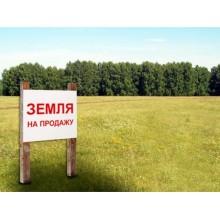 участок, Неронов Бор д., площадь: 3.3 сот., фермерское хозяйство, сельхозназначение
